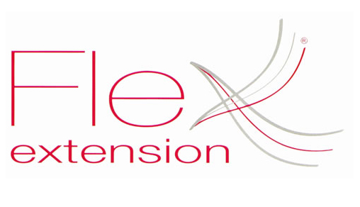 Flex extension logo
